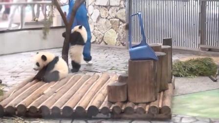 熊二: 熊大, 快看我最近刚学会的钢管舞。熊大