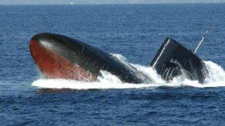 这种鱼能杀死鲸鱼, 还敢咬电缆、主动攻击潜艇, 被称为水下平头哥