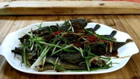 舌尖上的美味: 塘鲺鱼的家常做法, 肉质鲜美, 嫩滑好吃, 营养丰富