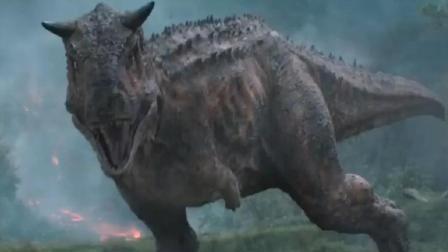 食肉牛龙5场生大战, 被霸王龙虐完被人虐, 这只恐龙战斗力有点渣