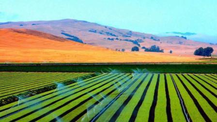 美国的农业竟如此发达! 农民不是一般的有钱!
