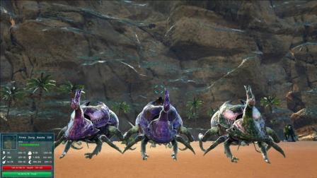 【幽疯君】《方舟生存进化》P3 三个屎壳郎顶个啥?