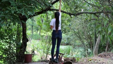 美女小姐姐在农村煮树的油脂当汤喝! 据说喝完养颜美容哦!