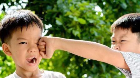 2岁孩子爱打人, 家长怎么教育都没用?