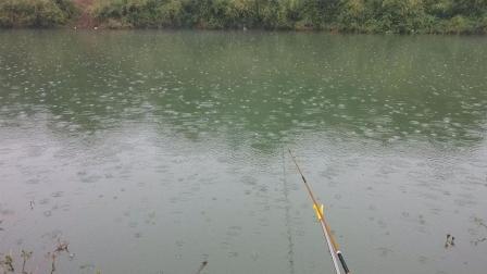夏末秋初雨季户外垂钓掌握四大技巧, 会让你拥有更好鱼获