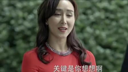 山水集团老总高小琴, 侯亮平夸她像一个优雅的女学者!