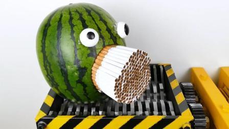 当香烟遇上粉碎机会怎样? 看它的下场就知道了, 烟民表示太浪费了