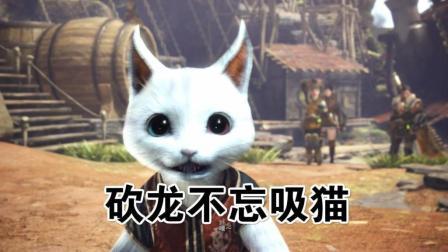 【瑞格】砍龙不忘吸猫——怪物猎人: 世界PC版