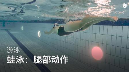 sikana游泳入门教学: 蛙泳的腿部姿势动作教学