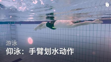 sikana游泳教学: 教你仰泳手臂划水动作