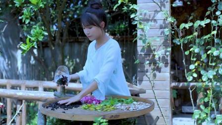 李子柒古香古食 第一季 第57集 逍遥草本茶 泡一杯自在逍遥