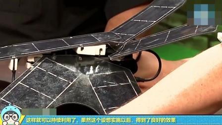 旧手机还有这妙用, 学霸将其改造后, 成功拯救了60万公顷森林!