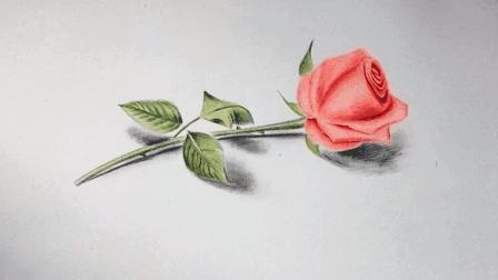 七夕情人节, 小伙画了一枝立体彩铅玫瑰花表白, 姑娘高兴坏了!