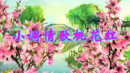 子龙芳华队员林下风韵《小调情歌桃花红》