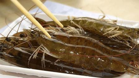 20元基围虾, 1把粉丝, 只需锅里一扔, 好吃到盘底都吃光