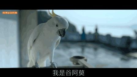 【谷阿莫】5分鐘看完2018七夕就是要看愛情恐怖片的電影《黑仙女 Pari》