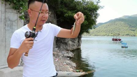 被美女小姐姐抛弃, 独自探钓两风景优美的水库, 寻巨型马口鱼