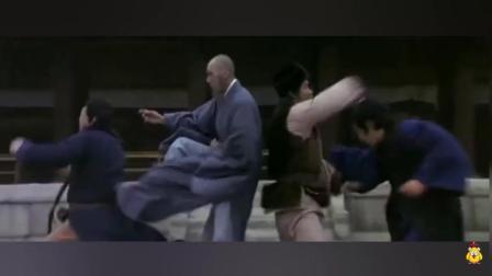 武打功夫片《蛇鹤八步》一把九龙令引起武林纷争 得令箭者得天下