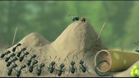 小小蚂蚁的世界, 充满了智慧, 充满了惊险