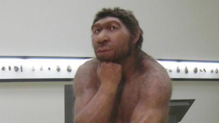 半岛奇闻 被遗忘的尼安德特人 原始人类文明的物种!