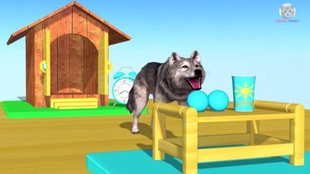 闹钟一响小狗就出来吃饭了 动画片