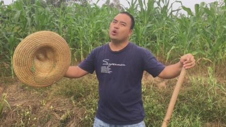 农民大哥在外打工十几年回家唱一首《新打工谣》, 唱出了多少心酸