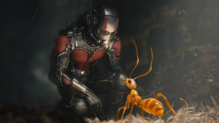 《蚁人2》上映前你需要知道的电影内容整理!