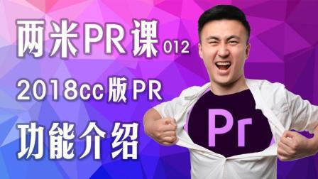 PR电脑剪辑教学012: 2018cc版本三大新功能介绍