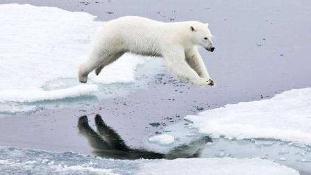 有数据表明, 若地球均温再升5度, 人类文明将会消亡