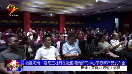 微视河南: 洛阳玉牡丹在微视河南新闻中心举行新产品发布会
