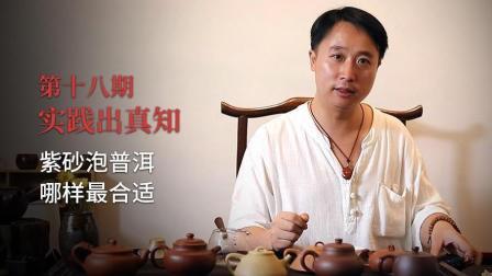 大圣说壶第18期: 实践出真知, 泡普洱茶用什么泥料的紫砂壶最好?