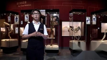 从分子生物学和古人类学的角度,解读人类起源,追溯科学