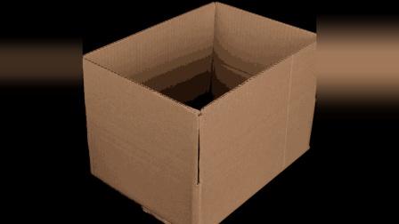 快递盒子不要丢掉了, 小姐姐教你秒变生活好物, 学到了!