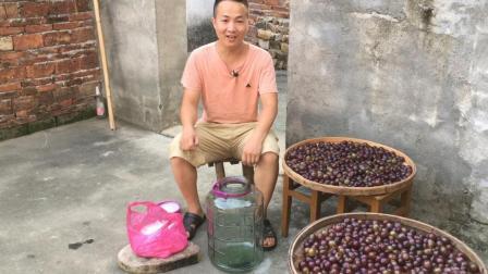 农村小伙做葡萄酒就有妙招, 用这三大步骤制作葡萄酒, 纯正又好喝