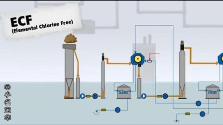 6分钟动画介绍纸浆和纸张