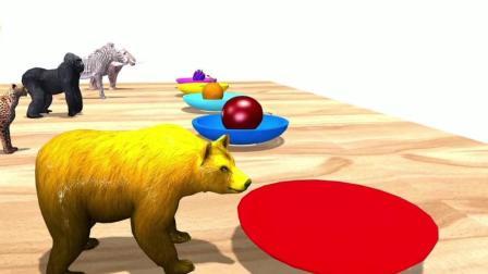益智: 幼儿颜色启蒙, 和狮子斑马大象等动物游泳吃水果学颜色识英语
