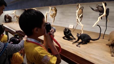 富士instax教育儿童摄影班课程受沪上家庭青睐