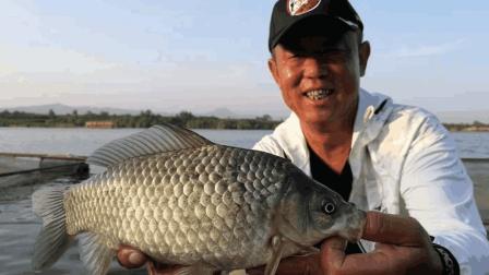 《游钓中国4》第13集 泔河抛竿遇困境 转变钓法显奇效