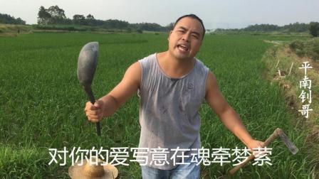 农民大哥边种地边唱《心在跳情在烧》, 唱得好嗨太好听了