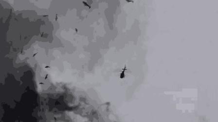 飞行员开飞机去炸龙卷风, 炸出来的居然是鲨鱼, 风太大了!