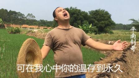非常好听的经典老歌《甘心情愿》, 农民大哥在地里唱得太好听了