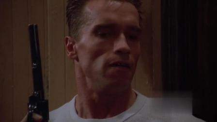 施瓦辛格警匪大片, 这样的肌肉男主演, 必属佳片