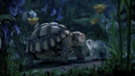 仲夏夜魔法:这药水绝了,居然让小老鼠爱上了乌龟,简直太奇葩了