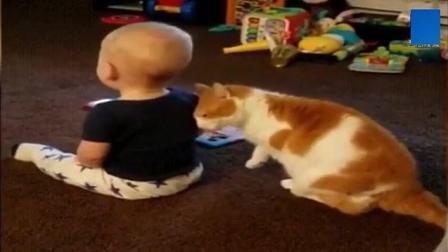 小宝宝生气的转身不想理喵星人, 猫咪这举动, 真搞笑