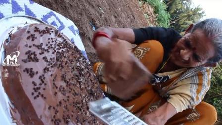 看印度老奶奶如何在野外做巧克力蛋糕