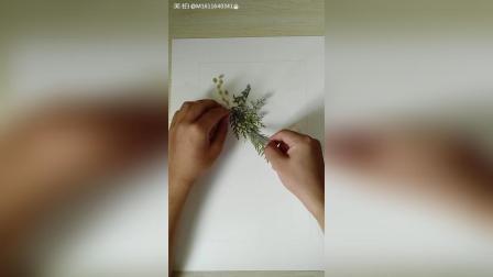 手工干花装饰画 植物标本