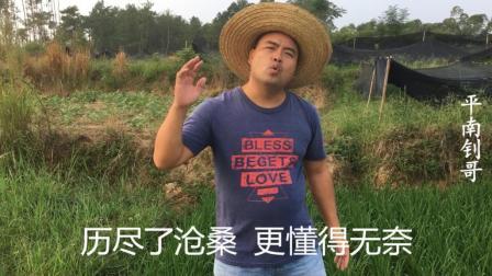 乡村版音乐《一曲红尘》, 农民大哥唱出农村版风格真的很棒