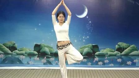 初级瑜伽课程视频 瑜伽教练培训好吗