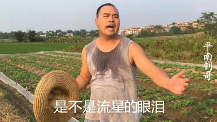 非常好听的经典老歌《谁的眼泪在飞》, 农民大哥唱的好投入好听
