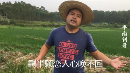 乡村音乐, 农民大哥唱一首《恋人心》好听就是歌词太伤感了